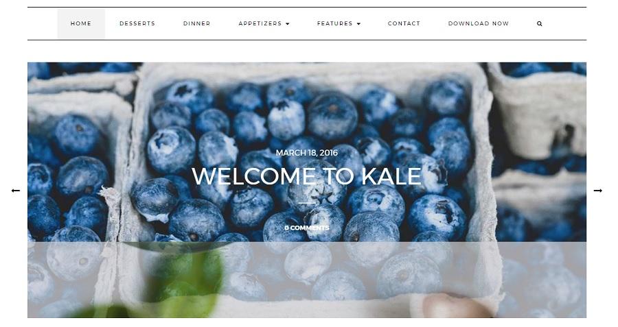 шаблон для WP Kale
